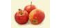 Apples-85x40